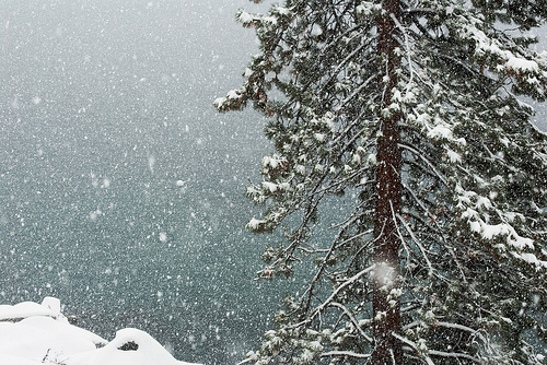 tahoe-new-year-snow.jpg