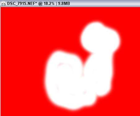 Capture-NX-Selection-Brush.jpg