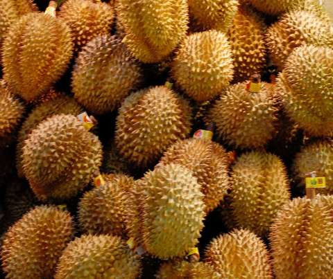 http://zo-d.com/stuff/images/durian-king-of-fruits.jpg